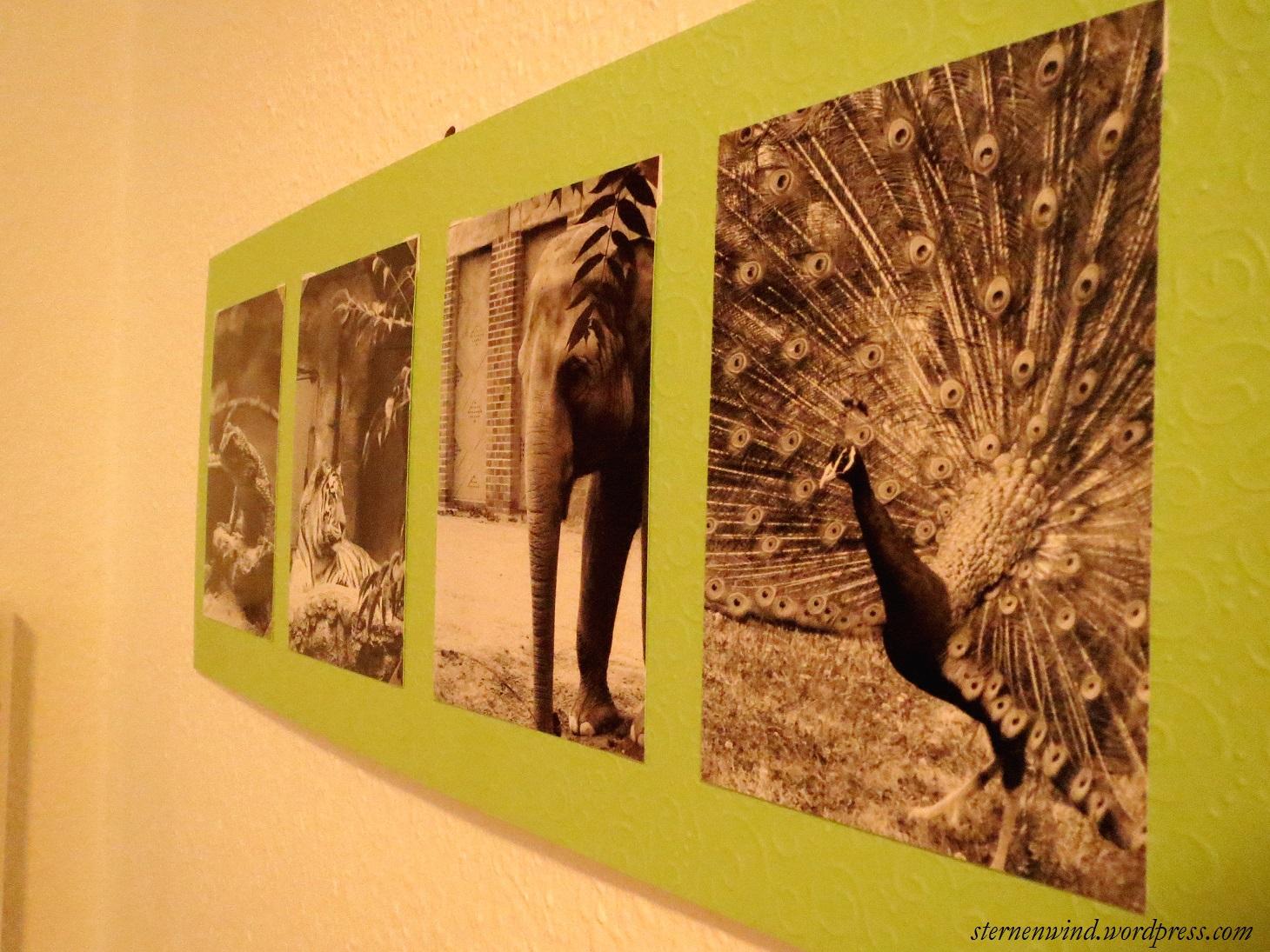 DIY: Bilderrahmen aus Pappe – Erinnerungen für die Wand ...