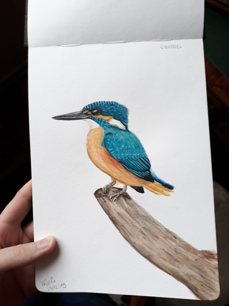 Eisvogel Aquarell